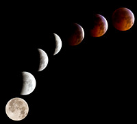 Winter Solstice Lunar Eclipse 12/21/2010