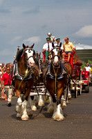 All eight Clydesdales are ready!